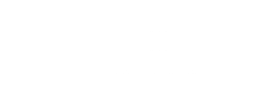 NuLEDs_Logo_White